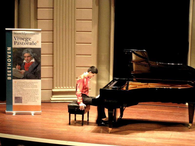 Martin Oei Fantasie Beethoven (2)
